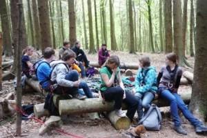 Den Wald entdecken - mal beim Klettern in der Höhe und mal auf dem Boden (Quelle: djo-Detmonster)