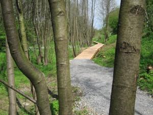 Inmitten der Natur, mal Schotter, mal ein Holzsteg. Der neue Wanderweg begeistert (Quelle: Dr. Christian Kahl)