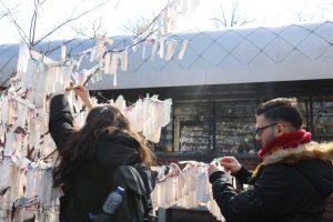 Die Jugendlichen bringen ihre Botschaften am Wunschbaum des Friedens an (Quelle: AJM LV NRW)